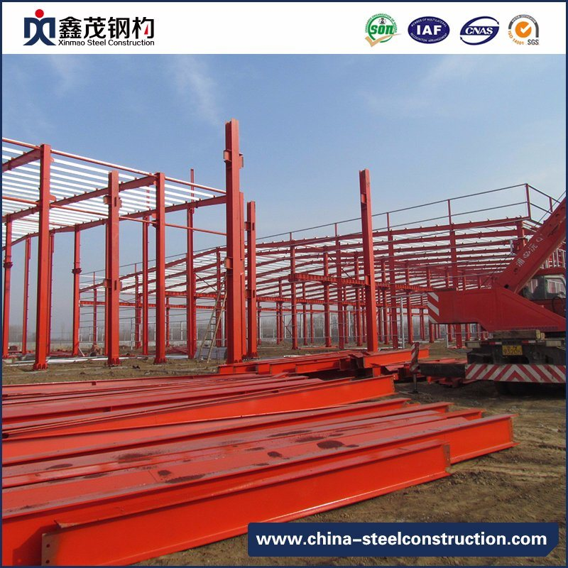 Professional Design Steel Structure -