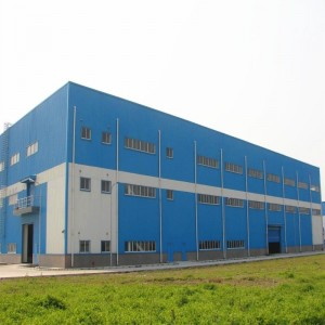 Fast Assembled Steel Structure Building (Steel Building) with Crane