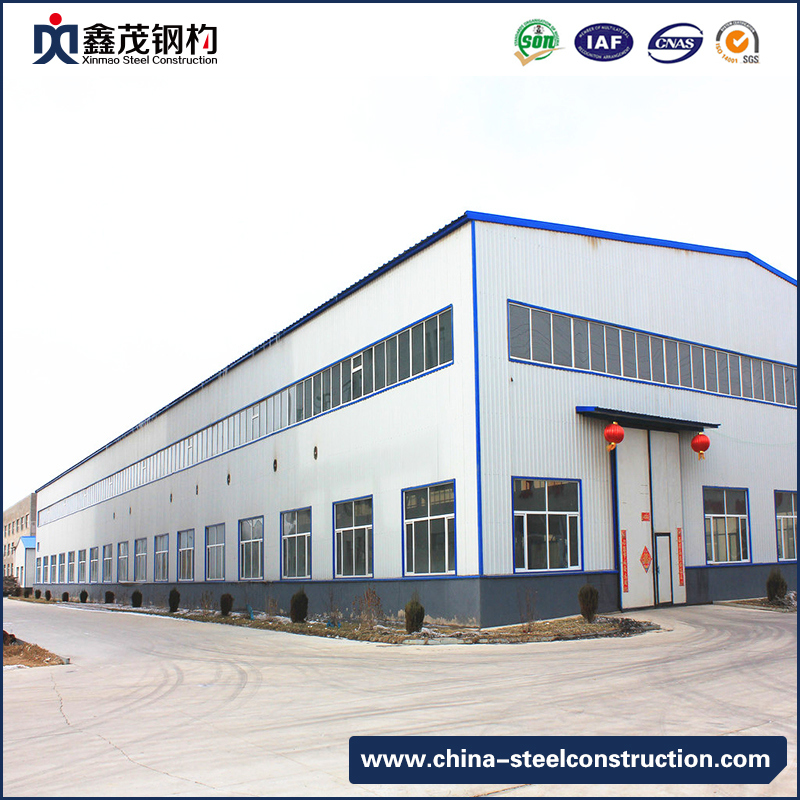 Professional China Container Homes For Sale -