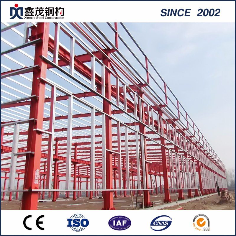 Best-Selling Prefab Tiny House -
