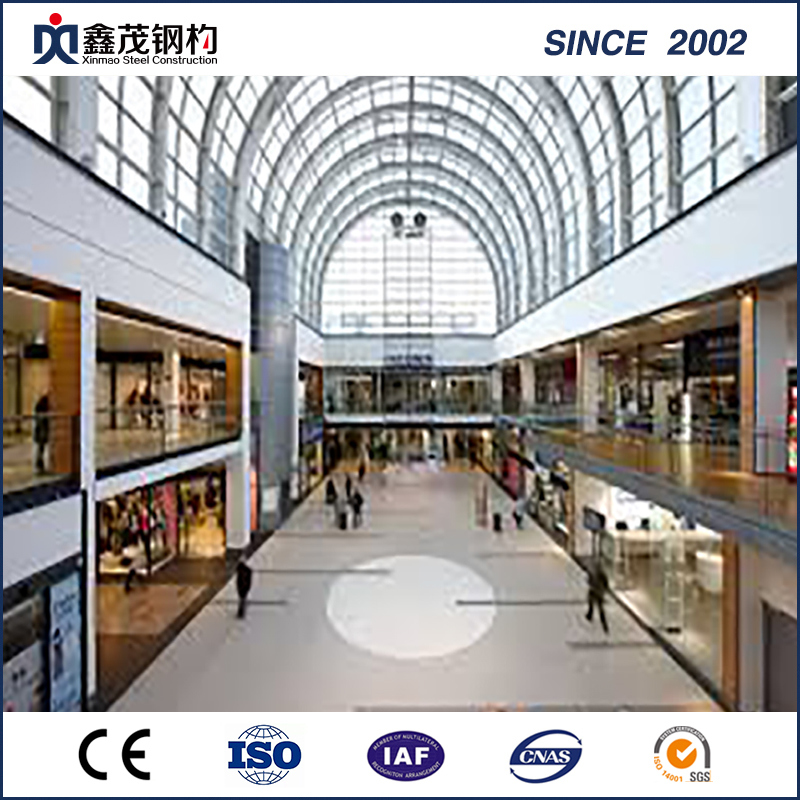 Hot Galvanized Steel Structure Shopping Mall with Large Span (Steel Building)