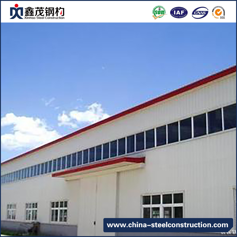 Professional China China Modular Container House -