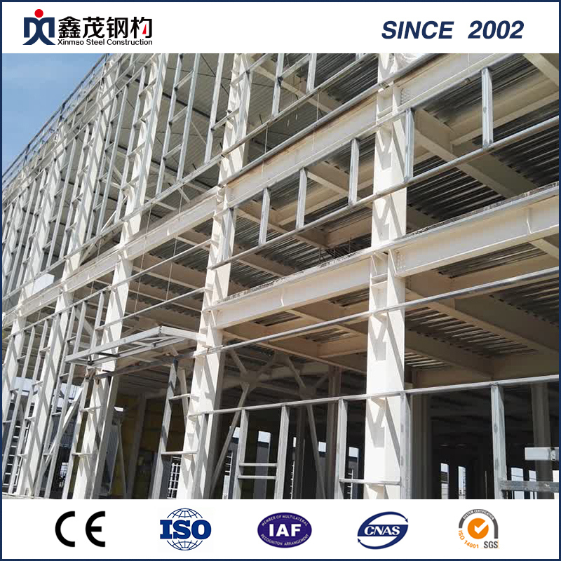 Best-Selling Steel Frame -