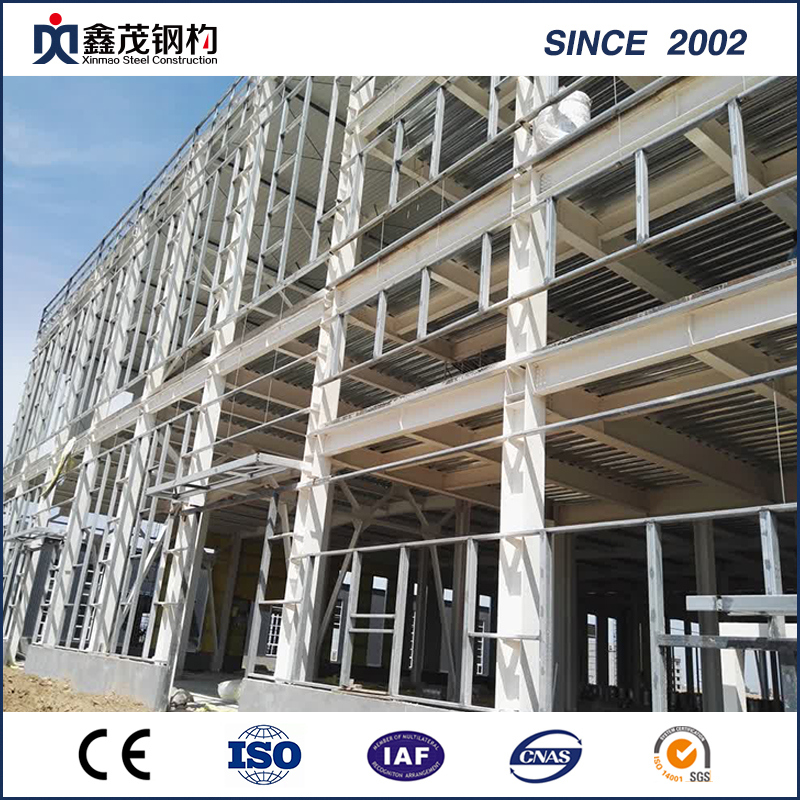 High Quality Steel Frame Apartment Building -