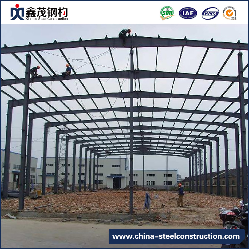 Professional Steel Structure Construction Warehouse Construction with Crane