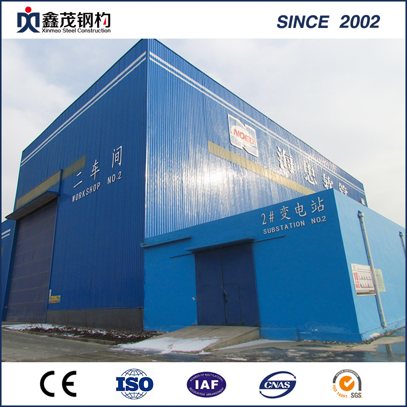 Professsional Steel Structure Logistic Warehouse Construction