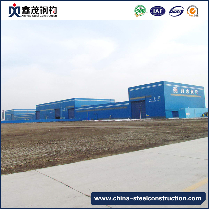 Supply OEM/ODM Steel Frame Building Section - Steel Structure ...