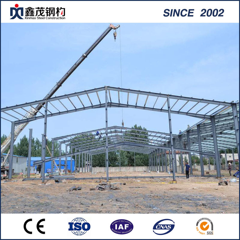 Steel Structure Hangar for Steel Structure Warehouse with Professional Manufacturer